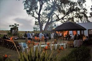 Rosenview events